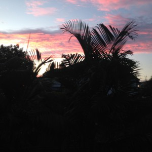 Sunrise From Our Back Yard